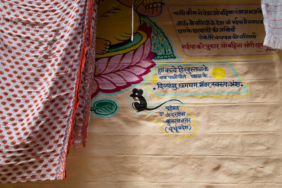 rg-india-walls (7)